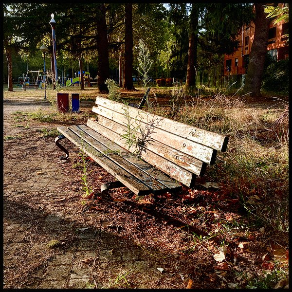 una panchina abbandonata nel parco